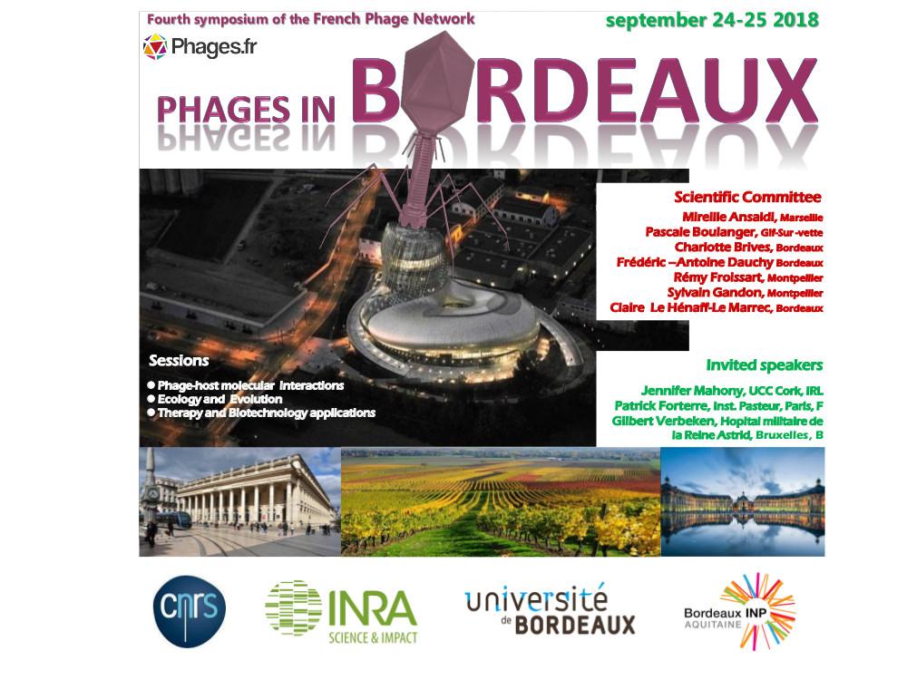 vue institut du vin vigne centre-ville INP Université bordeaux INRA CNRS